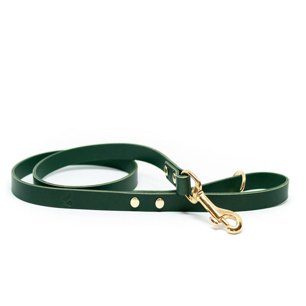 The Essential Classic Leather Leash in Jade Green - This Dog's Life