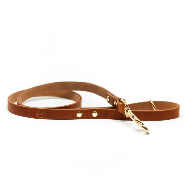 The Essential Classic Leather Leash in Tan - This Dog's Life
