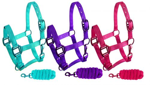 Showman Pony Triple Ply Nylon Halter W/ Lead W/ Powder Coated Hardware