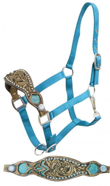 Showman ® 2 ply teal nylon bronc halter with filigree print inlay