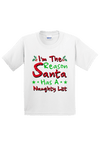 I am the Reason there is a Naughty List Youth Christmas Shirt