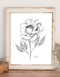 Wall art of line drawing illustration of a peony with stem and leaves
