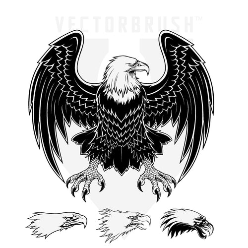 Eagle Vector Art -2