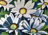 Painted Daisies