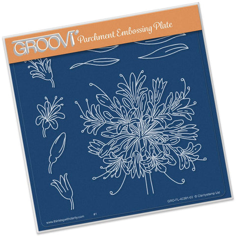 Jayne's Agapanthus <br/>A5 Square Groovi Plate