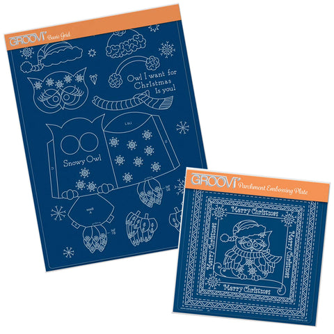 Linda's Winter Owls Duo Groovi Plates