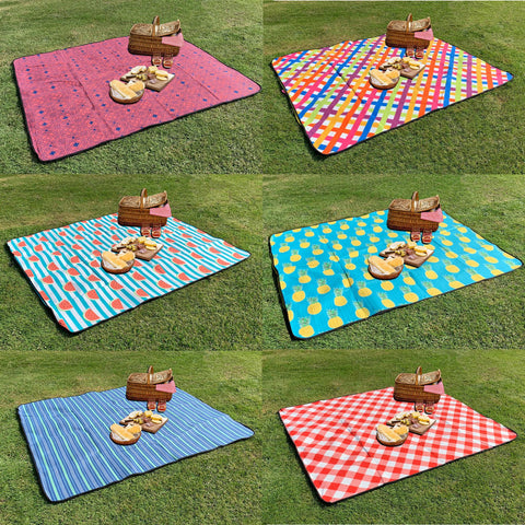 Large Foldable Picnic Mat