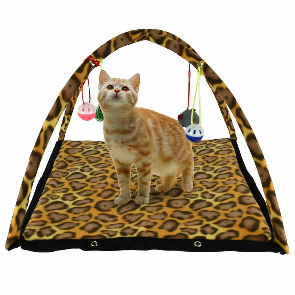 Cat Play Activity Center