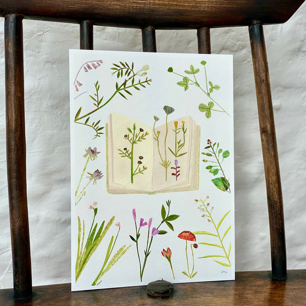 Illustrated Print - Wildflowers