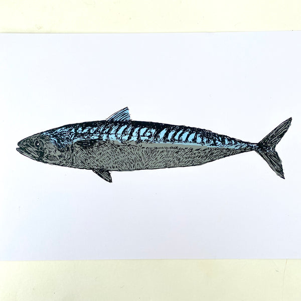 Welsh Mackerel Print