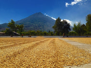 Guatemala - Los Volcanes 250g Coffee Beans
