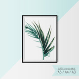 PALM LEAF - SET