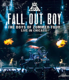 BOYS OF ZUMMER LIVE IN CHICAGO BRD Image