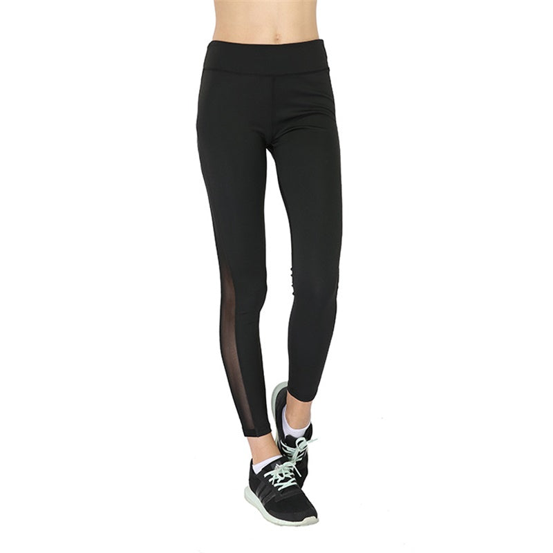 Premium Mesh Splice Leggings