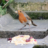 Robin & Friends -  Natural Wild bird food and seed mixes - for Small Garden Birds