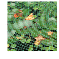 Plant Netting Crop and Pond Protection 4 x 1.7 Metres