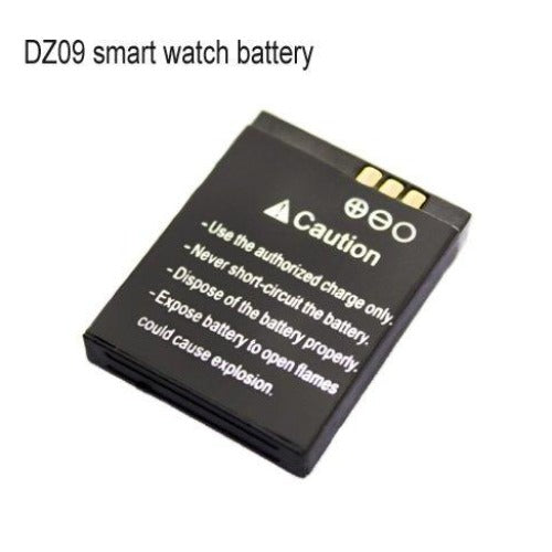 SmartWatch Batteries