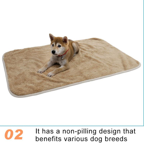 Pet Blanket With Lovely Paw Print Design