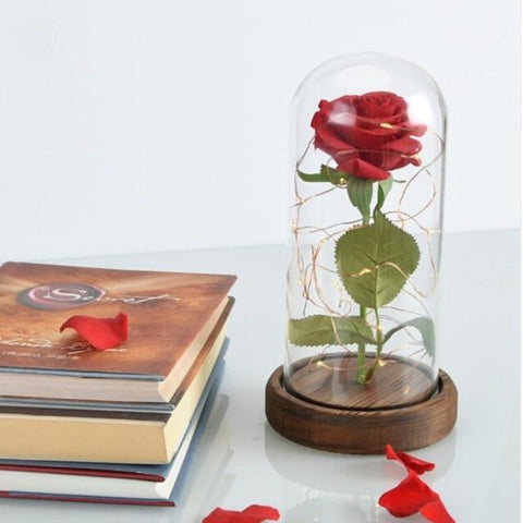 Enchanted Rose in Glass Dome