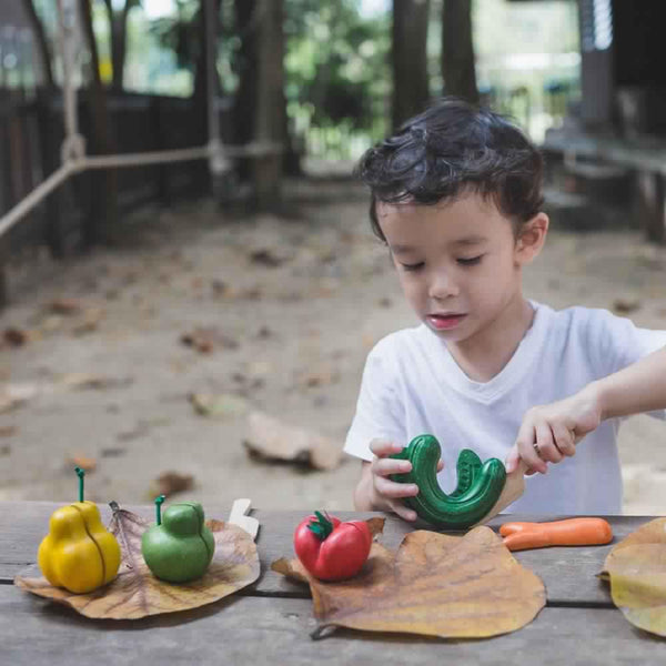 Wonky Fruit and Vegetables - Plan Toys