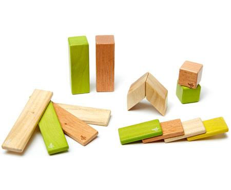 Tegu Magnetic Wooden Blocks 14 piece Set Jungle