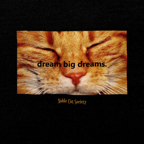 Dream Big Dreams (1) LS T-Shirt