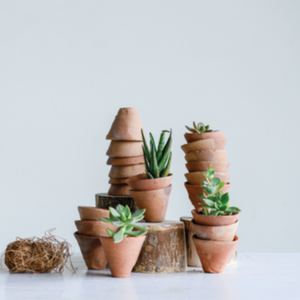 Mini Terra Cotta Planter