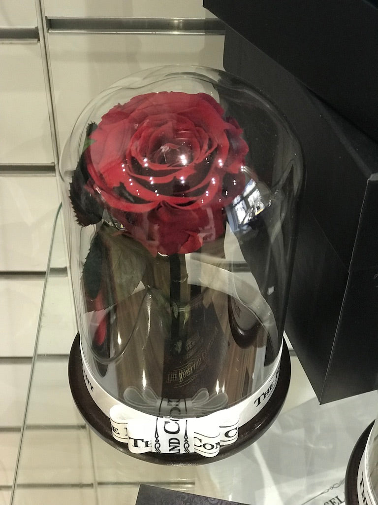 As Seen In Beauty And The Beast Everlasting Rose Under The Dome