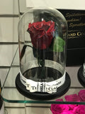 As seen in Beauty and the Beast: Everlasting Rose, Under the Dome