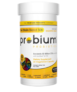 Probium; Ten Strain 50B 60 Veggie Delayed Release Capsules-Whole Approach