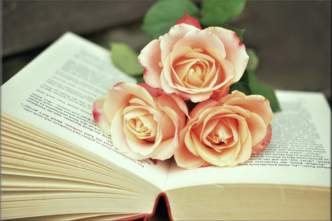 ROSES PINK BOOK ROMANTIC FLOWERS FLORAL PAGES CANVAS WALL ART HANGING IMAGE