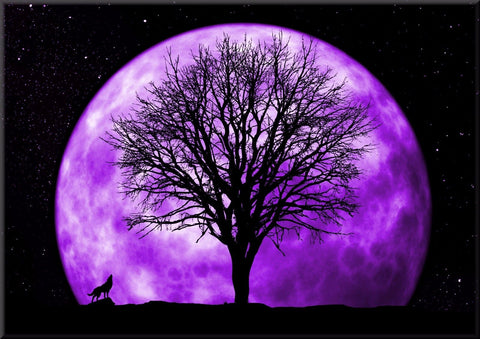 FULL MOON SKY HOWLING WOLF COLOUR CANVAS WALL HANGING PICTURE IMAGE PURPLE