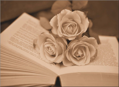 ROSES BOOK PAGES VINTAGE ANTIQUE SEPIA CANVAS WALL ART IMAGE PICTURE FLOWERS