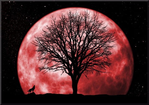 FULL MOON SKY HOWLING WOLF COLOUR CANVAS WALL HANGING PICTURE IMAGE RED