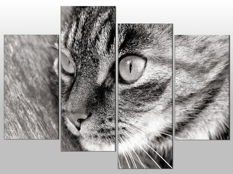CAT BLACK AND WHITE ANIMAL CUTE LARGE SPLIT PANEL 4 PANEL CANVAS WALL ART IMAGE