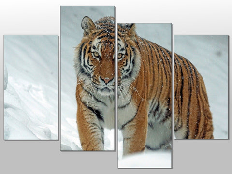 TIGER SNOW ANIMAL BIG CAT NATURE LARGE SPLIT PANEL 4 PANEL CANVAS WALL ART IMAGE
