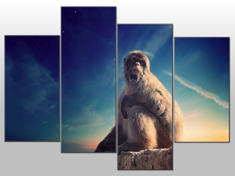 MONKEY SKY NATURE ANIMAL LARGE SPLIT PANEL 4 PANEL CANVAS WALL ART IMAGE