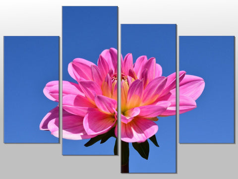 LARGE PINK FLOWER CLOSE UP SKY LARGE SPLIT PANEL 4 PANEL CANVAS WALL ART IMAGE