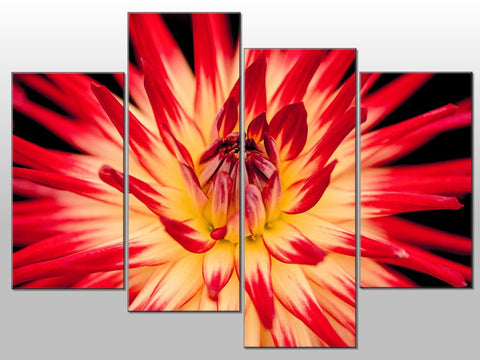 FLOWER CLOSE UP RED YELLOW PINK LARGE SPLIT PANEL 4 PANEL CANVAS WALL ART IMAGE