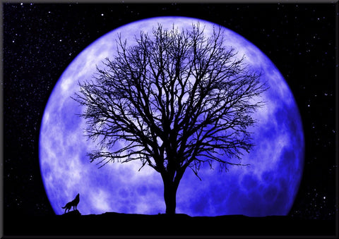 FULL MOON SKY HOWLING WOLF COLOUR CANVAS WALL HANGING PICTURE IMAGE BLUE
