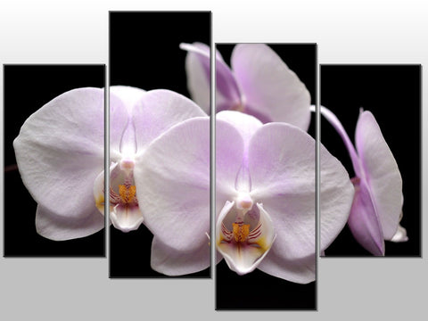 ORCHID FLOWER FLORAL WHITE BLACK LARGE SPLIT PANEL CANVAS WALL ART IMAGE PICTURE