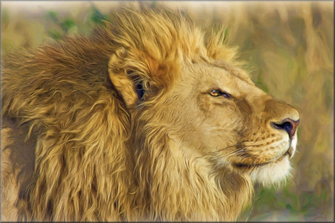 LION PAINTING ANIMAL CANVAS WALL HANGING IMAGE PHOTO NATURE ART