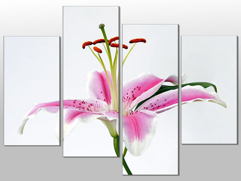 PINK WHITE LILLY FLOWER CLOSE UP LARGE SPLIT PANEL 4 PANEL CANVAS WALL ART IMAGE