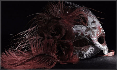 MASK FEATHER BOA CANVAS WALL HANGING IMAGE PHOTO BLACK RED PINK PURPLE