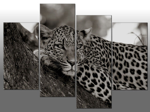 LEOPARD RESTING TREE GREYSCALE LARGE SPLIT PANEL 4 PANEL CANVAS WALL ART IMAGE