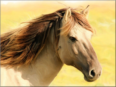 HORSE HEAD PAINTING CANVAS WALL HANGING IMAGE PICTURE YELLOW BEIGE