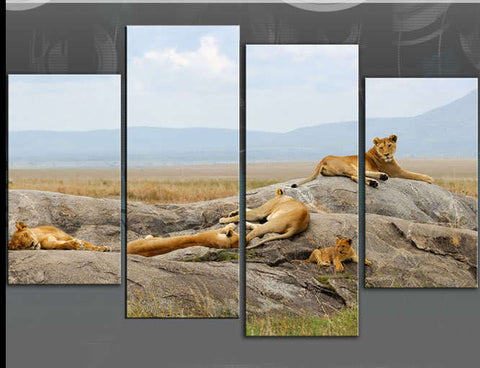 LION PRIDE ANIMALS BIG CATS LARGE SPLIT PANEL 4 PANEL CANVAS WALL ART IMAGE