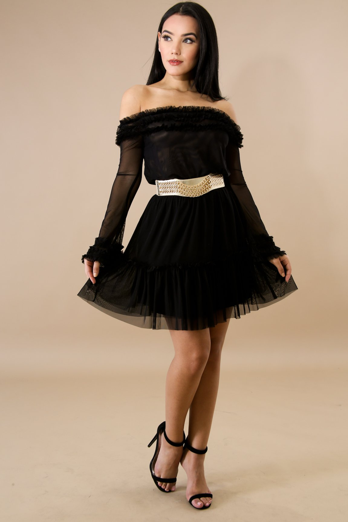 Pleated Sheer Tulle Dress