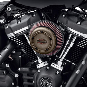 Harley-Davidson® Brass Air Cleaner Trim - 61400339 Parts & Accessories
