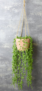 Hanging Plant Pot with String of Pearls